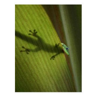 Gecko del día del polvo de oro postal