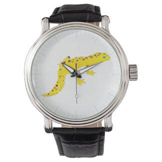 Gecko del leopardo reloj