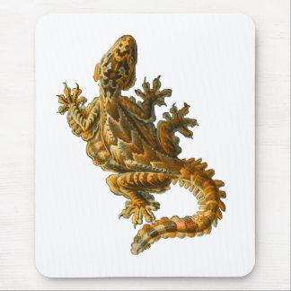 Gecko del vuelo de Kuhl Alfombrillas De Ratón