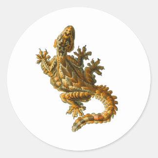 Gecko del vuelo de Kuhl Pegatina Redonda