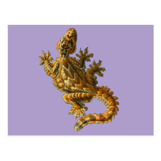 Gecko del vuelo de Kuhl Postal