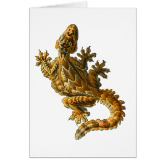 Gecko del vuelo de Kuhl Tarjeta De Felicitación
