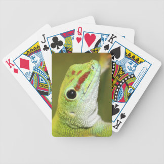 Gecko face bicycle playing cards