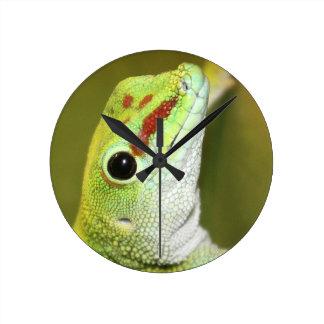 Gecko face round clock