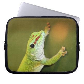 Gecko Fundas Ordendadores