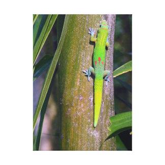 Gecko gecko del polvo de oro del polvo de oro g impresion en lona
