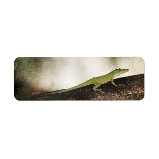Gecko Green Cameleon Lizard on Brown Wood Branch Label