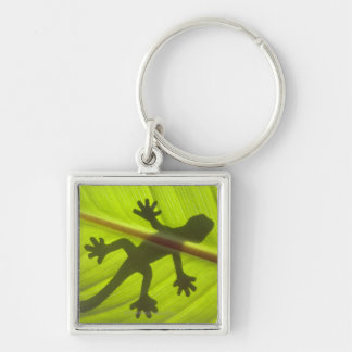 Gecko Silver-Colored Square Keychain