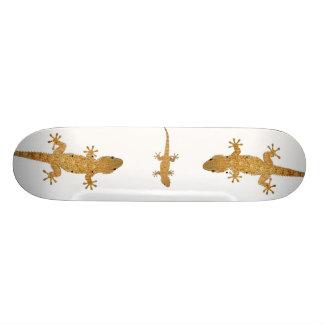Gecko lizard reptile skateboard