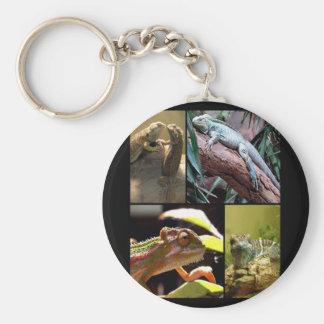 Gecko lizards and Chameleons Keychain