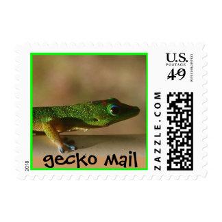gecko mail versus snail mail postage stamp
