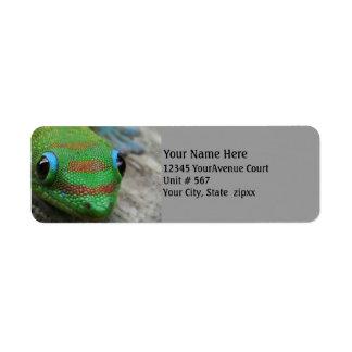 Gecko Photo Label