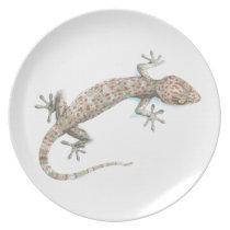 gecko plate
