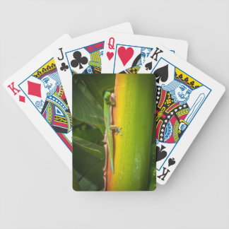 Gecko Playing Cards