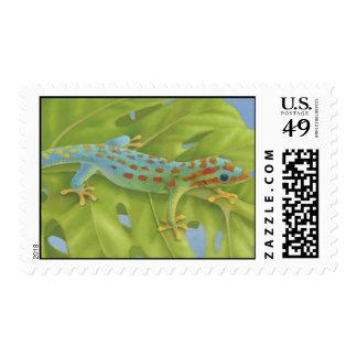 Gecko Postage Stamp