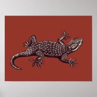 Gecko Póster