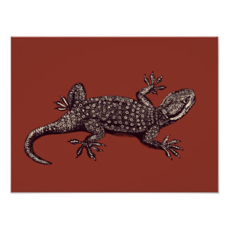 Gecko Posters