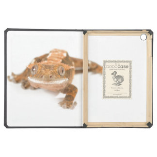Gecko Stare iPad Air Covers