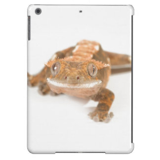 Gecko Stare Cover For iPad Air