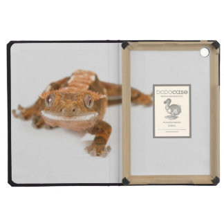 Gecko Stare iPad Mini Cases