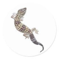 Gecko Stickers 01