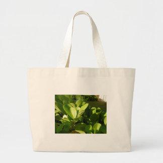 Gecko Tote Tote Bags