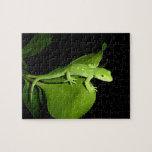 Gecko verde de Auckland Puzzle Con Fotos