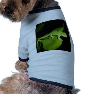 Gecko verde de Auckland Camisetas Mascota