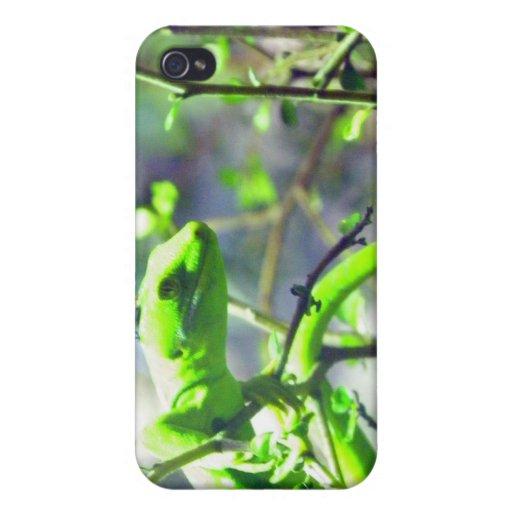 Gecko verde de la tierra del norte iPhone 4 cobertura