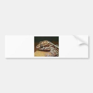 Geckos Bumper Sticker