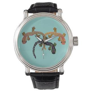 Geckos del desierto reloj
