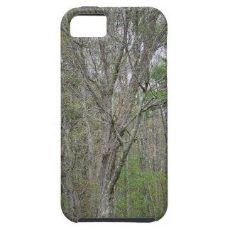 GEDC0491 (2).JPG iPhone SE/5/5s CASE