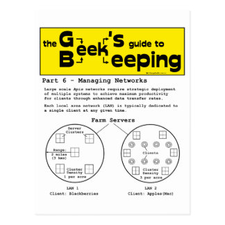 Geek Beekeeping (Networks) - Postcard