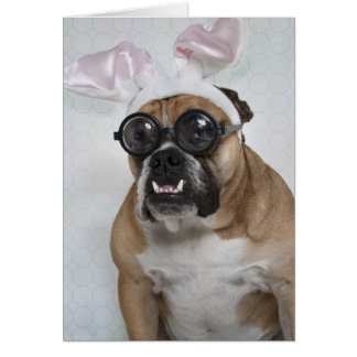 """""""Geekster Bunny"""" Greeting Cards"""