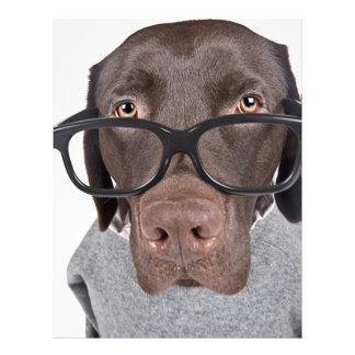 Geeky Dawg Letterhead
