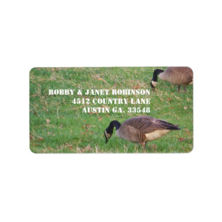 Geese Address Stickers