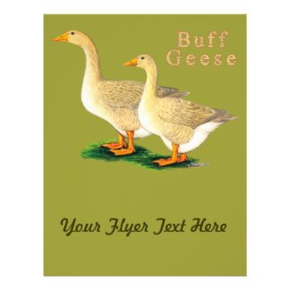 Geese:  American Buffs Personalized Flyer