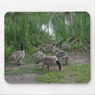 Geese and Goslings Mpousepad Mouse Pad