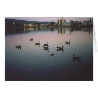 Geese at Sunset, Lake Merritt, Oakland, CA Card