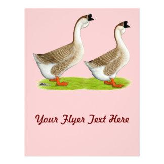 Geese:  Buff African Flyer