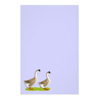 Geese:  Buff African Stationery