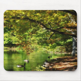 Geese by Pond In Autumn Mouse Pad
