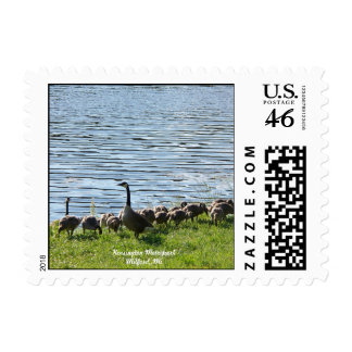 Geese by the Lake Postage Stamp SMALL