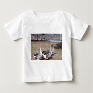 Geese by the Pond Baby T-Shirt