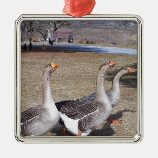 Geese by the pond square metal christmas ornament zazzle Pond ornaments