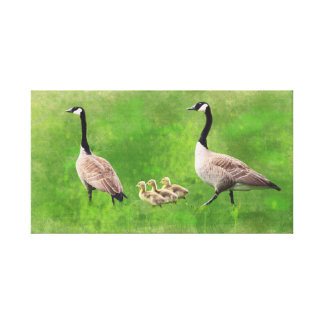 Geese Family on Watercolor Background Canvas Print