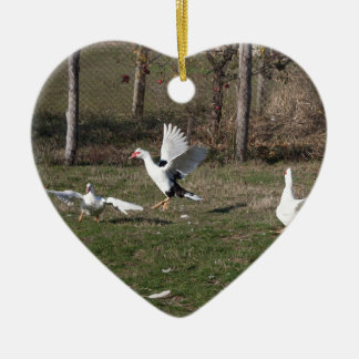 Geese fighting ceramic ornament
