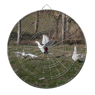 Geese fighting dartboard with darts