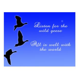 Geese Fly Across The Sky - Listen Birds Post Cards