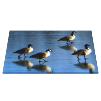 Geese Frozen Lake Canvas Print